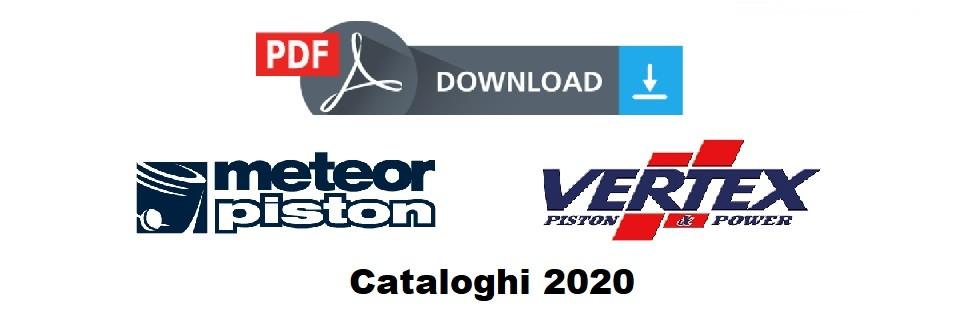 Scarica i cataloghi 2020